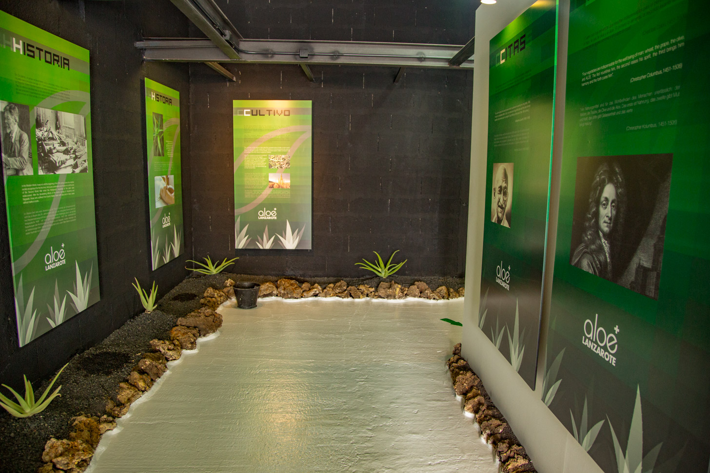 Aloe Vera House Museum
